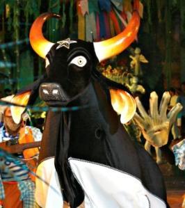 Roteiro cultural: Festival de Parintins 2008